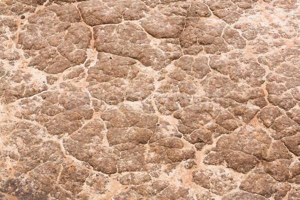 Soil texture Stock photo © smuay
