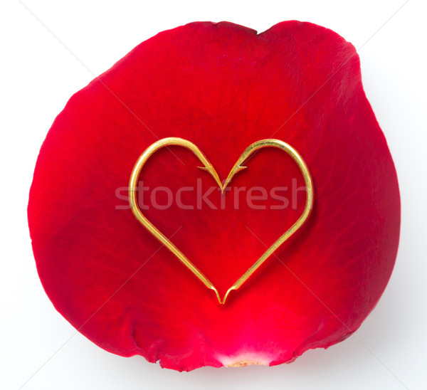 Rose petal and hook Stock photo © smuay