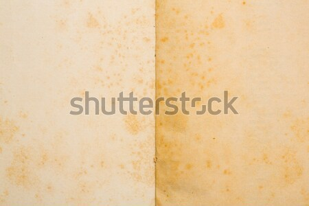 Paper texture Stock photo © smuay