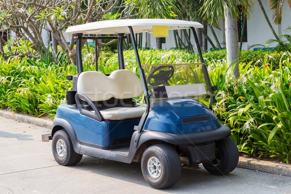 Golf kosár klub autó golfpálya üzlet Stock fotó © smuay