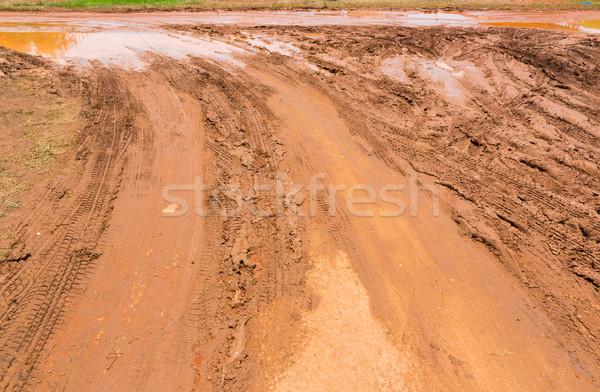 Marshy road Stock photo © smuay