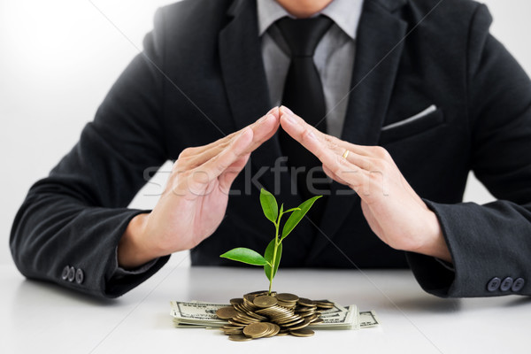 Business man hand make palm up with growing up money coins and s Stock photo © snowing
