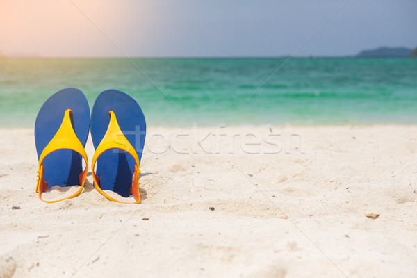 Beach sandals on the sandy sea coast, summer concept holiday and Stock photo © snowing