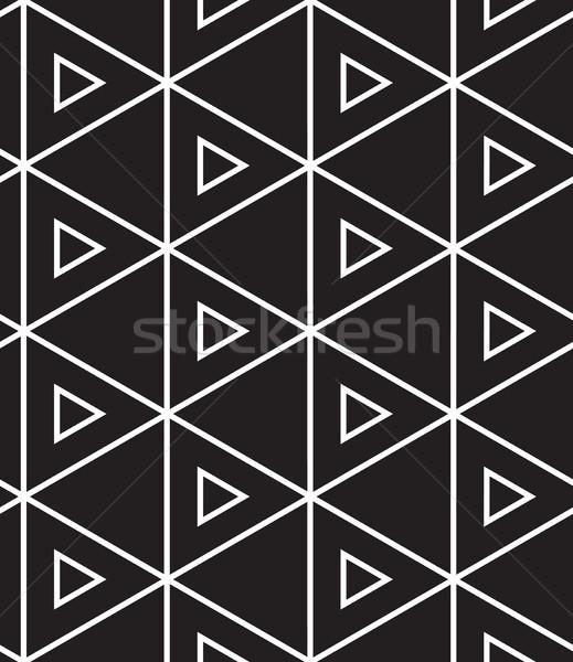 Vettore moderno lineare geometrica texture Foto d'archivio © softulka