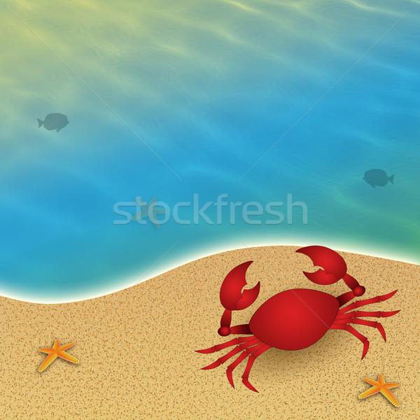 Crab at sea Stock photo © sognolucido