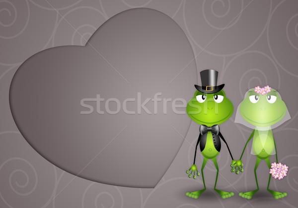 Béka friss házasok illusztráció esküvő szeretet pár Stock fotó © sognolucido