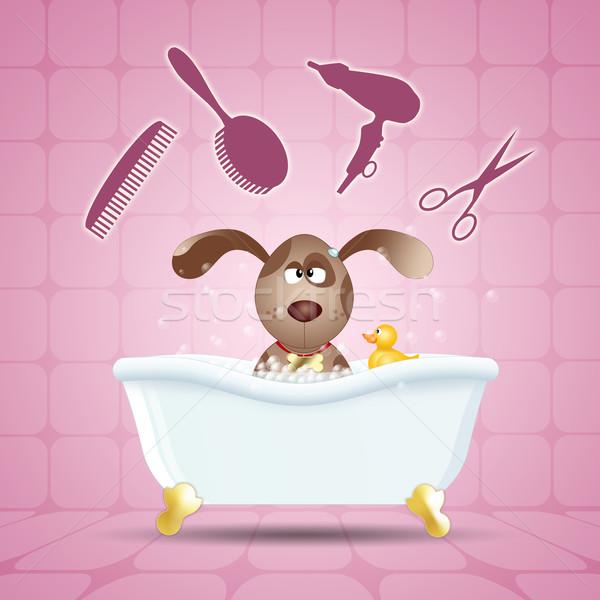 Dog grooming in bath Stock photo © sognolucido