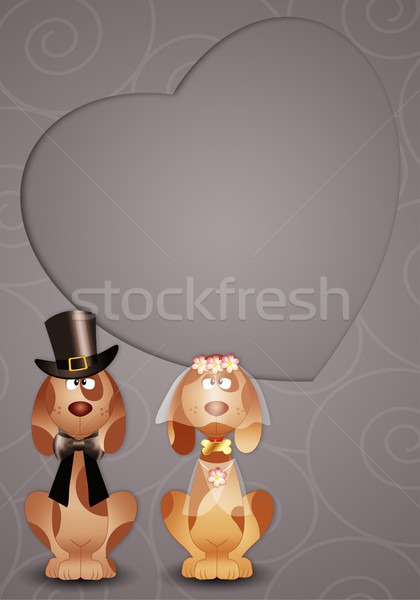 Dogs just married postcard Stock photo © sognolucido
