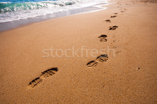 footsteps on the beach Stock photo © sognolucido