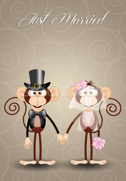 A couple of monkeys just married Stock photo © sognolucido