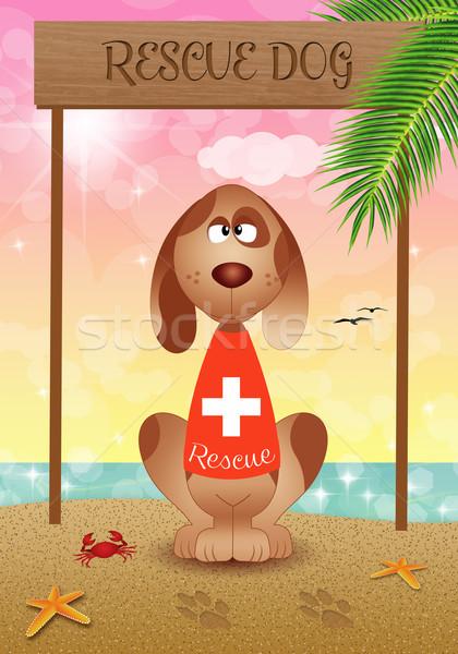 Rettung Hund Strand Illustration Ozean helfen Stock foto © sognolucido