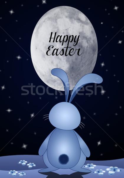 Kellemes húsvétot illusztráció vicces nyuszi éjszaka húsvét Stock fotó © sognolucido