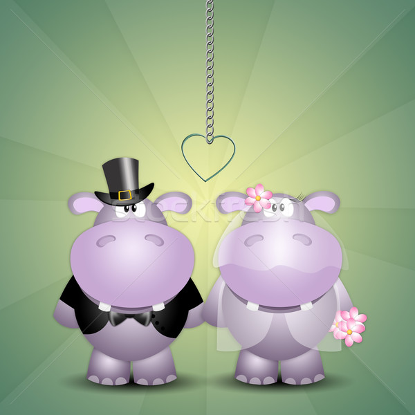 A couple of hippos just married Stock photo © sognolucido