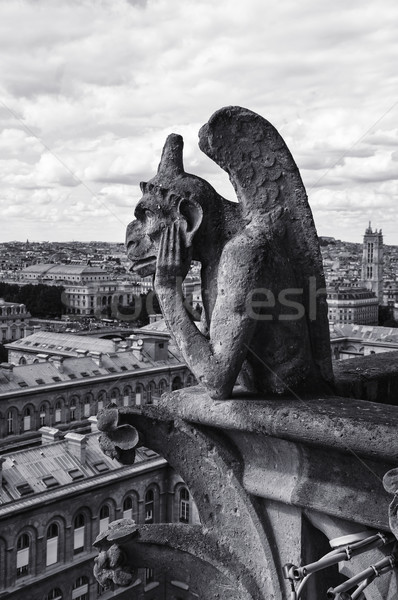 View from Notre Dame Cathedral in Paris Stock photo © sognolucido