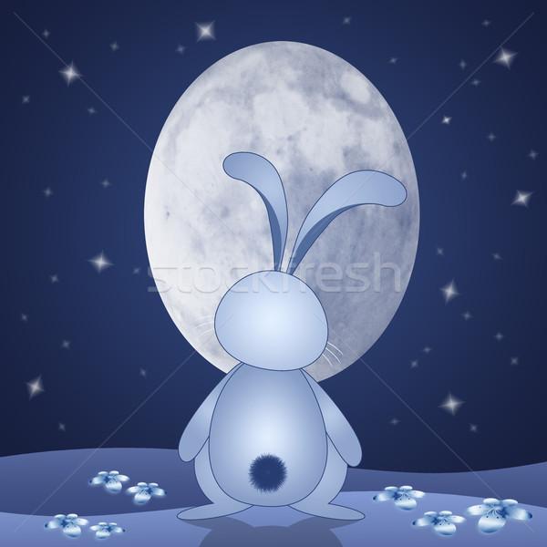 смешные Bunny ночь кролик овальный луна Сток-фото © sognolucido