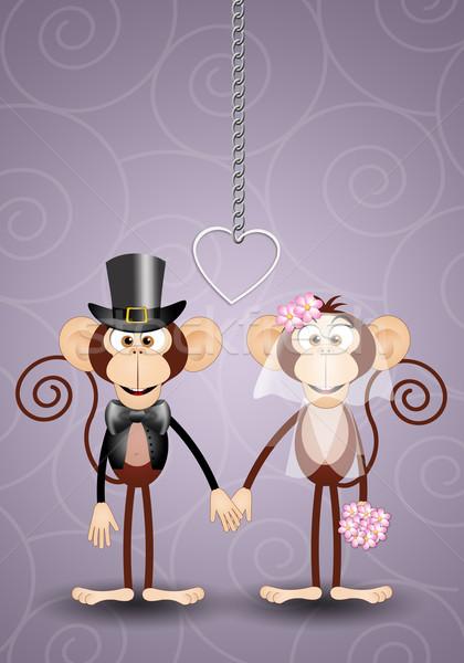 Illusztráció pár majmok friss házasok esküvő szeretet Stock fotó © sognolucido