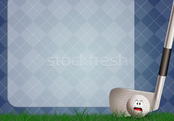 ゴルフ クラブ 実例 スポーツ 楽しい カップ ストックフォト © sognolucido