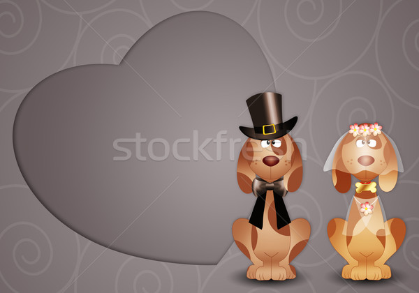 Dogs just married Stock photo © sognolucido