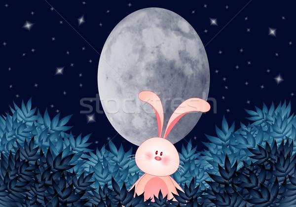Tavşan oval ay gece Paskalya çiçek Stok fotoğraf © sognolucido