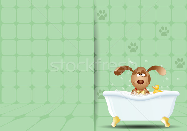 Dog in bathroom for grooming Stock photo © sognolucido