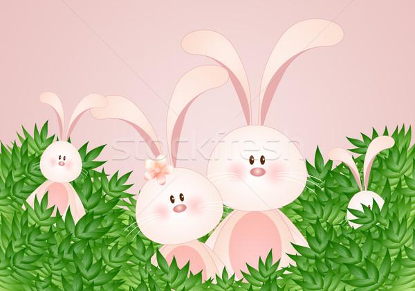 Rodziny króliki funny Wielkanoc kwiat liści Zdjęcia stock © sognolucido