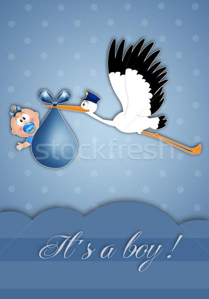 Gólya baba fiú újszülött gyermek madár Stock fotó © sognolucido