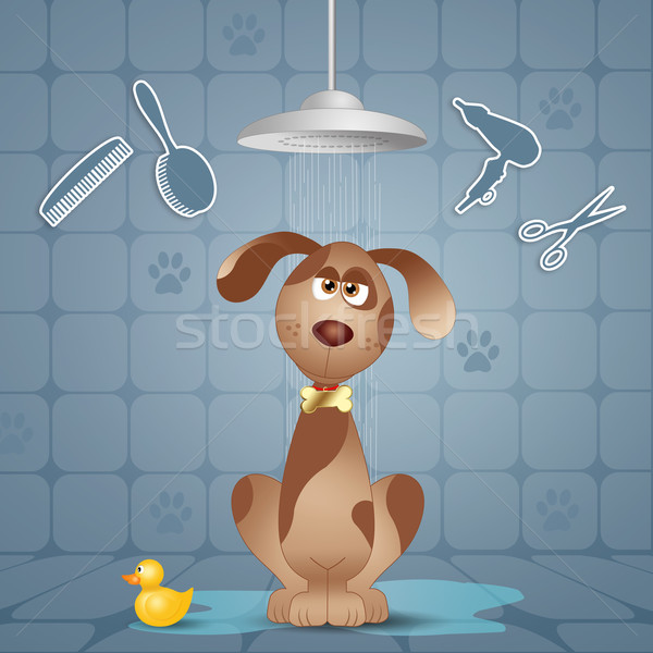 Dog grooming Stock photo © sognolucido