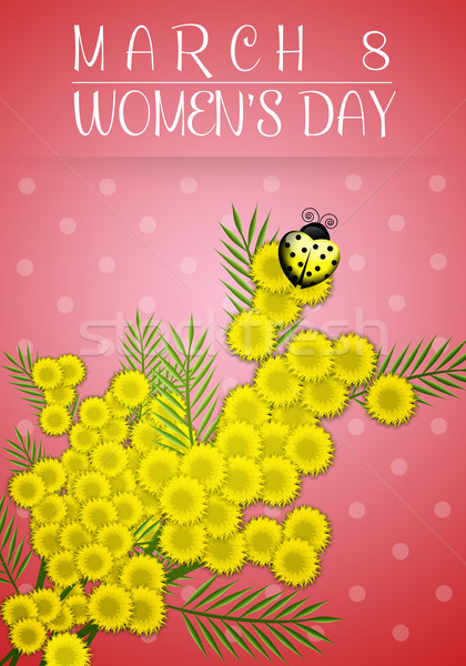 Mimosas for Women's Day Stock photo © sognolucido
