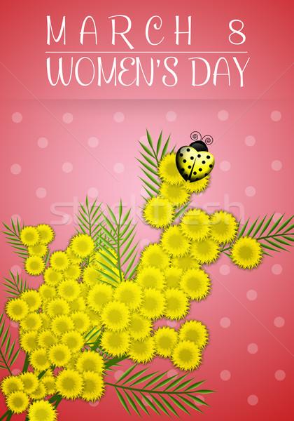 Женский день иллюстрация женщину празднования концепция Сток-фото © sognolucido