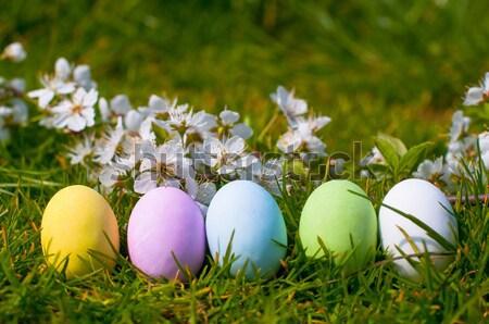 Huevo de Pascua huevos de Pascua naturales Pascua primavera celebración Foto stock © sognolucido