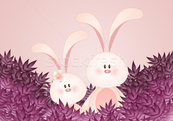 2 ウサギ 葉 カップル イースター 花 ストックフォト © sognolucido