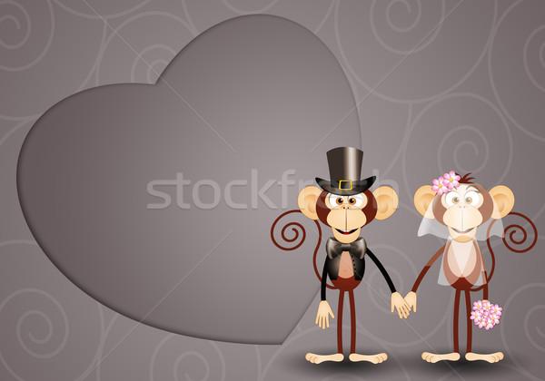 Обезьяны иллюстрация свадьба любви пару Сток-фото © sognolucido