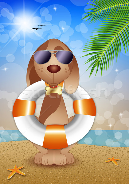 Sauvetage chien plage illustration océan aider Photo stock © sognolucido