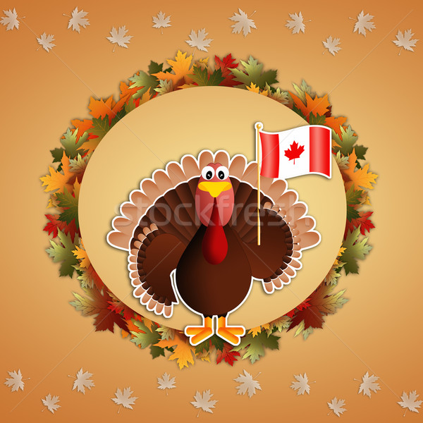 Turkey with Canadian flag  Stock photo © sognolucido