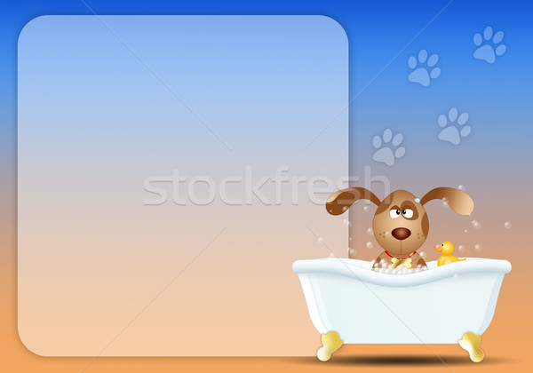 Stock photo: Dog in bath for grooming