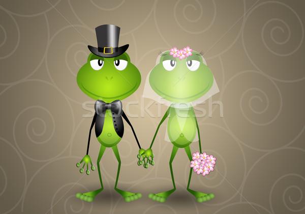 Stok fotoğraf: Kurbağa · düğün · sevmek · çift · evli