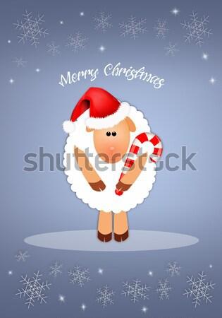 Komik beyaz koyun şeker Noel kar Stok fotoğraf © sognolucido