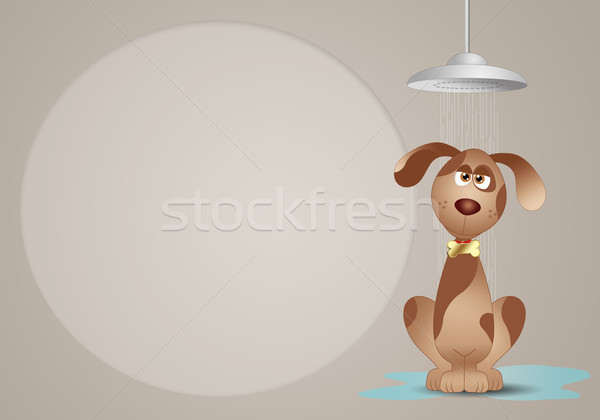 Dog grooming  Stock photo © sognolucido