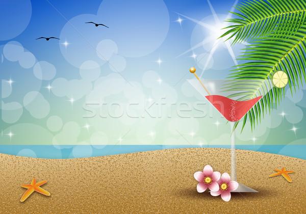 Kokteyl plaj meyve içmek parti yaz Stok fotoğraf © sognolucido