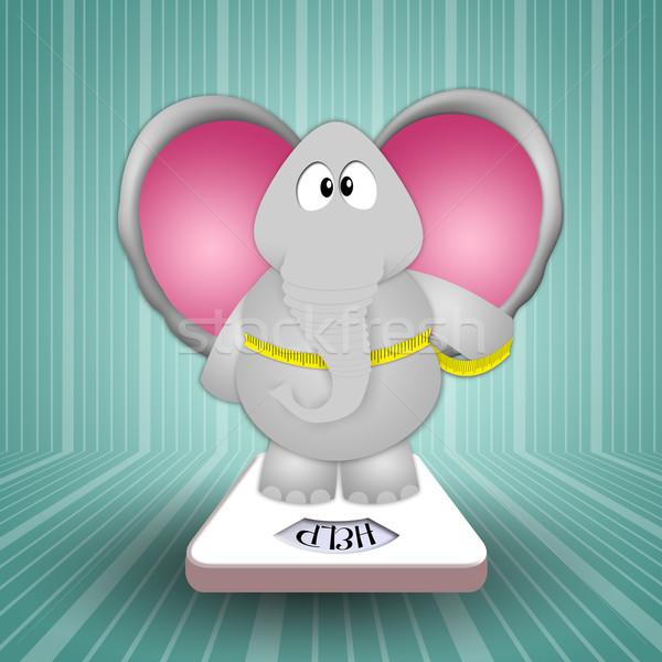 слон баланса тело здоровья веса Сток-фото © sognolucido