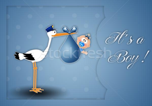 Cicogna baby ragazzo bambino uccello Foto d'archivio © sognolucido