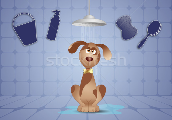 Vicces kutyus zuhany illusztráció állatok buborékok Stock fotó © sognolucido