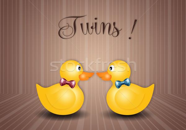 ördek oyuncak ikizler erkek kadın erkek Stok fotoğraf © sognolucido