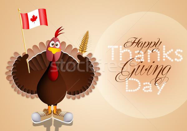 Турция флаг Канада смешные осень уха Сток-фото © sognolucido