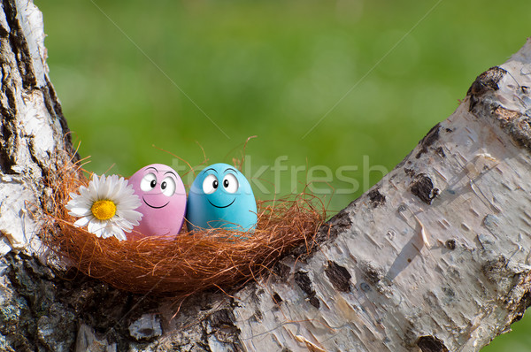 面白い 卵 カップル 巣 イースター ストックフォト © sognolucido