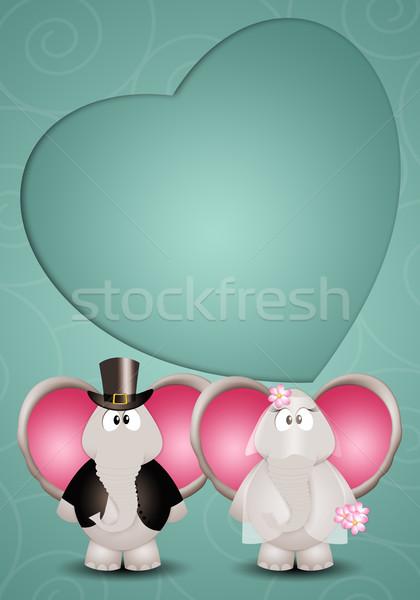 A couple of elephants spouses Stock photo © sognolucido