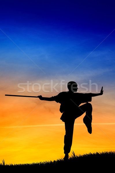 Shaolin pose Stock photo © sognolucido