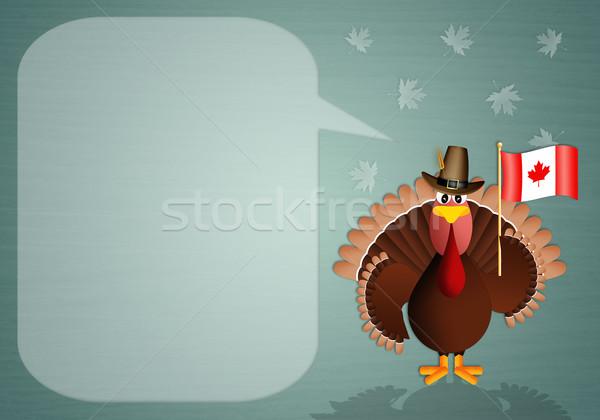 Drôle Turquie drapeau canadien illustration feuille automne Photo stock © sognolucido