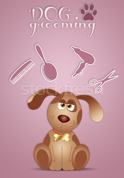 Funny doggy for grooming Stock photo © sognolucido