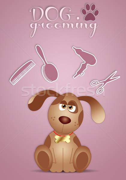 Engraçado cãozinho ilustração animais bubbles banho Foto stock © sognolucido